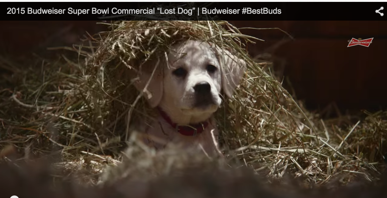Photo of Super Bowl ads that are likely to generate some commotion (Video)