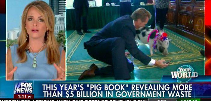 $5 Billion in Pork Barrel Spending uncovered in DC