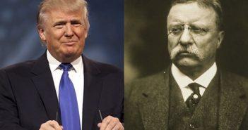 Trump Teddy