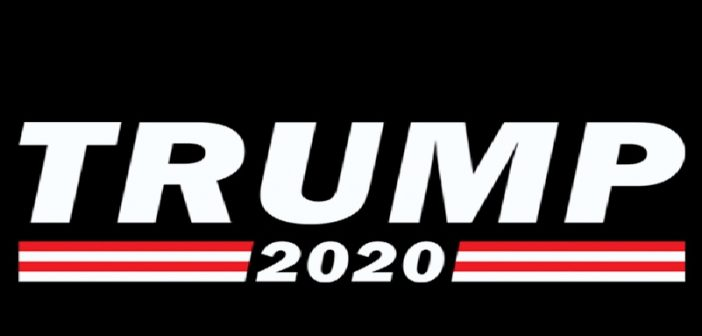 BREAKING: DEMS RE-ELECT TRUMP IN 2020